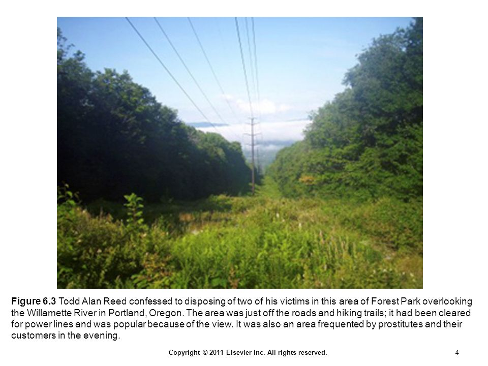 Copyright © 2011 Elsevier Inc. All rights reserved. 4 Figure 6.3 Todd Alan Reed confessed to disposing of two of his victims in this area of Forest Pa