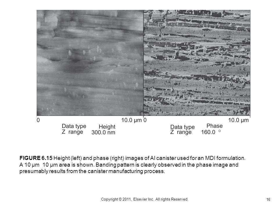 16 Copyright © 2011, Elsevier Inc. All rights Reserved. FIGURE 6.15 Height (left) and phase (right) images of Al canister used for an MDI formulation.