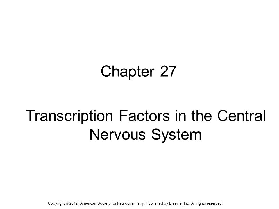 1 Chapter 27 Transcription Factors in the Central Nervous System Copyright © 2012, American Society for Neurochemistry. Published by Elsevier Inc. All
