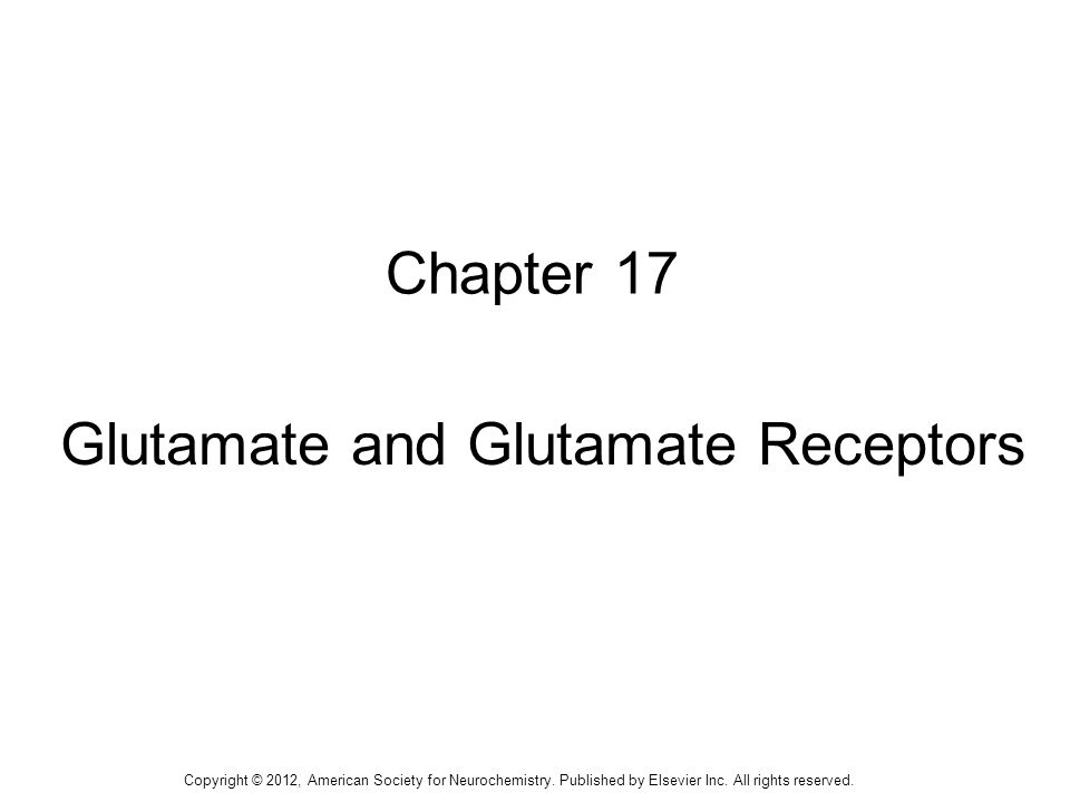 1 Chapter 17 Glutamate and Glutamate Receptors Copyright © 2012, American Society for Neurochemistry.