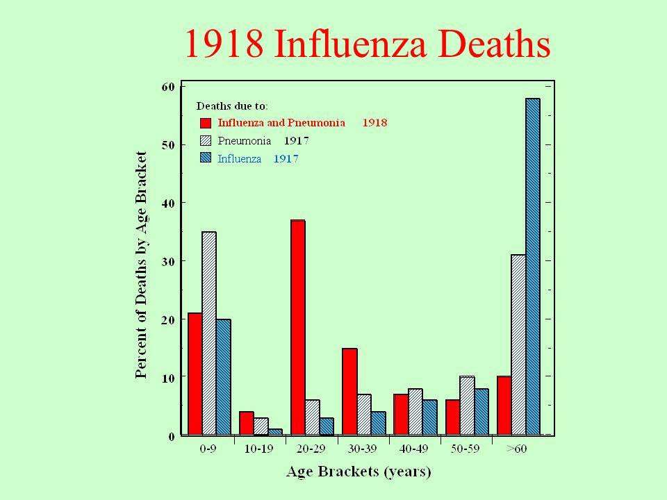 1918 Influenza Deaths