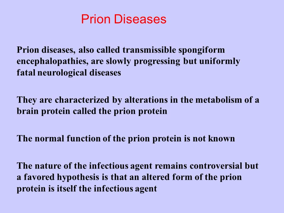 Prion Diseases Prion diseases, also called transmissible spongiform encephalopathies, are slowly progressing but uniformly fatal neurological diseases They are characterized by alterations in the metabolism of a brain protein called the prion protein The normal function of the prion protein is not known The nature of the infectious agent remains controversial but a favored hypothesis is that an altered form of the prion protein is itself the infectious agent