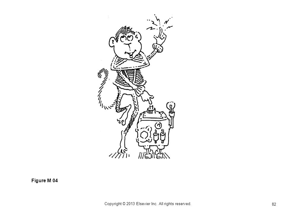82 Copyright © 2013 Elsevier Inc. All rights reserved. Figure M 04