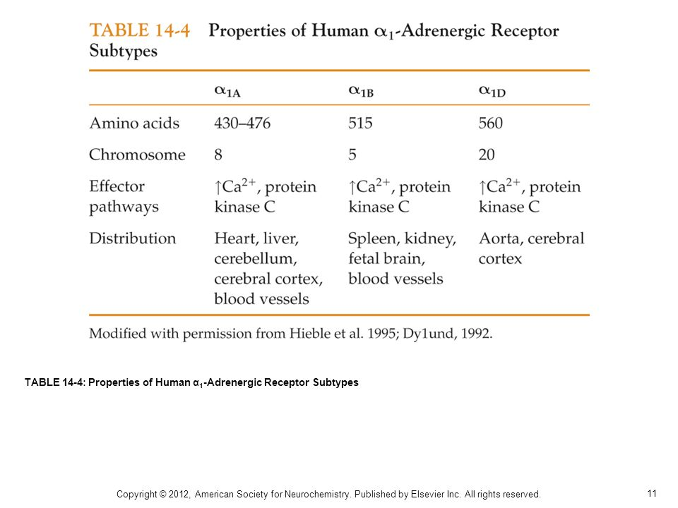 11 TABLE 14-4: Properties of Human α 1 -Adrenergic Receptor Subtypes Copyright © 2012, American Society for Neurochemistry.