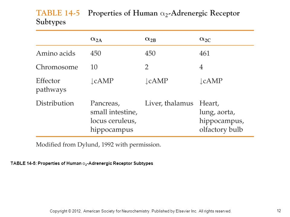 12 TABLE 14-5: Properties of Human α 2 -Adrenergic Receptor Subtypes Copyright © 2012, American Society for Neurochemistry.