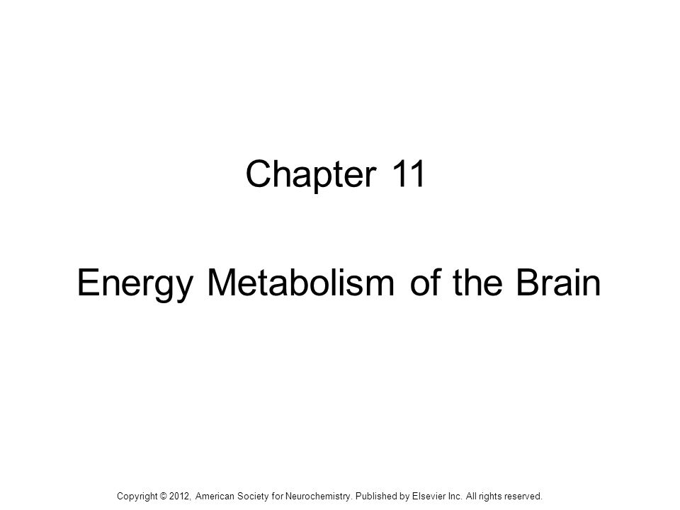 2 TABLE 11-1: Calculated Energy Use by Brain Copyright © 2012, American Society for Neurochemistry.