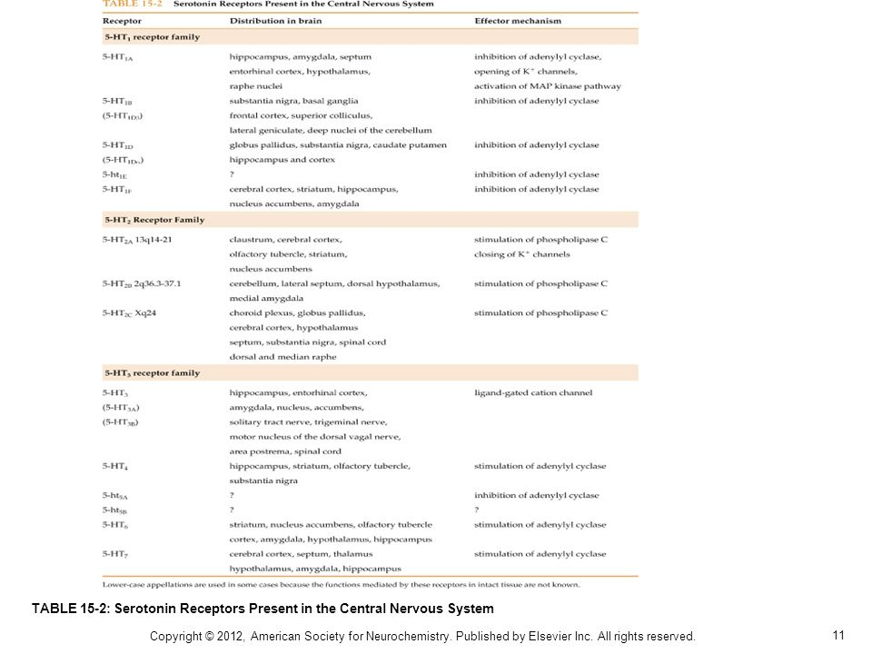 11 TABLE 15-2: Serotonin Receptors Present in the Central Nervous System Copyright © 2012, American Society for Neurochemistry. Published by Elsevier