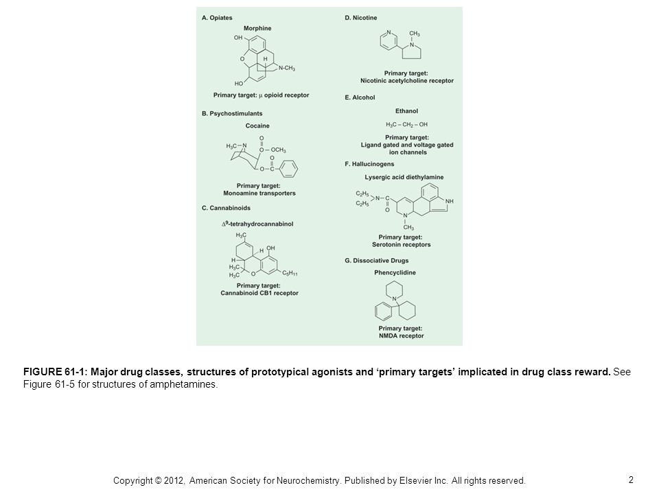 2 FIGURE 61-1: Major drug classes, structures of prototypical agonists and primary targets implicated in drug class reward.