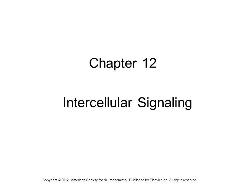 1 Chapter 12 Intercellular Signaling Copyright © 2012, American Society for Neurochemistry.
