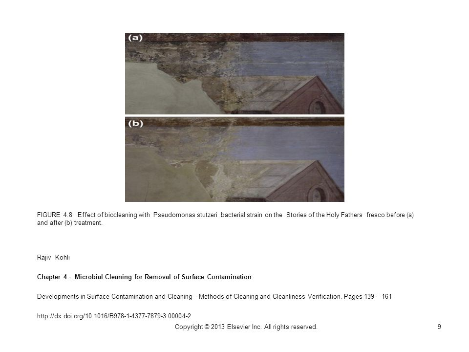 FIGURE 4.8 Effect of biocleaning with Pseudomonas stutzeri bacterial strain on the Stories of the Holy Fathers fresco before (a) and after (b) treatment.