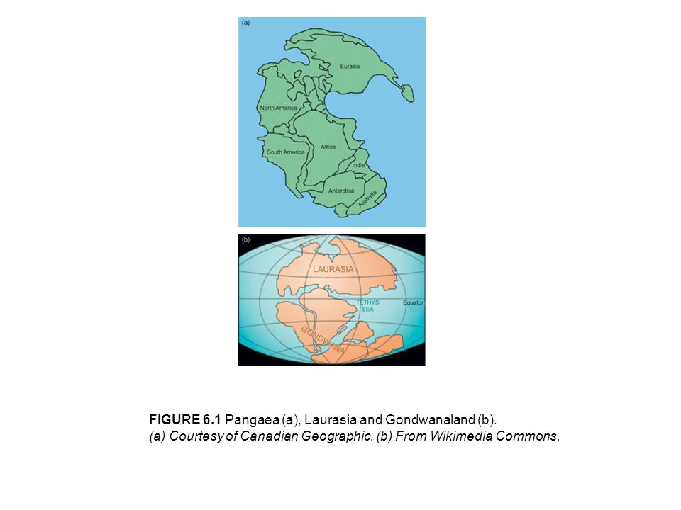 FIGURE 6.1 Pangaea (a), Laurasia and Gondwanaland (b).