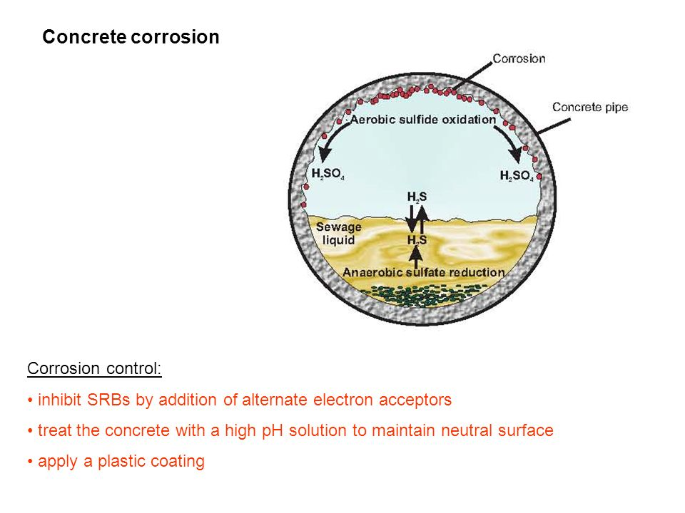Concrete corrosion Corrosion control: inhibit SRBs by addition of alternate electron acceptors treat the concrete with a high pH solution to maintain