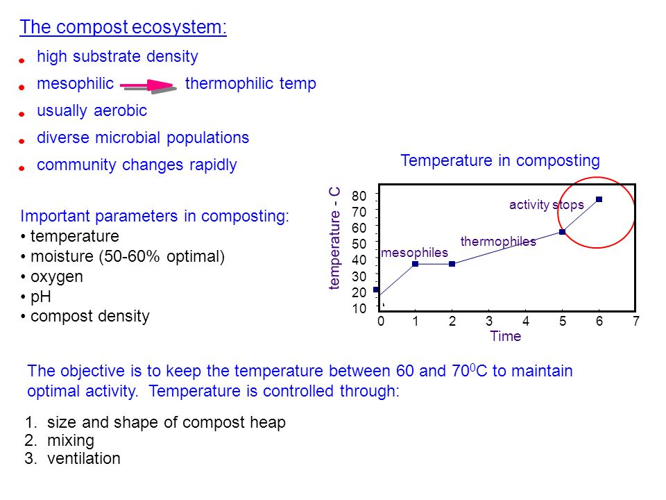 Temperature in composting 01234567 10 20 30 40 50 60 70 80 mesophiles thermophiles activity stops Time temperature - C The objective is to keep the te