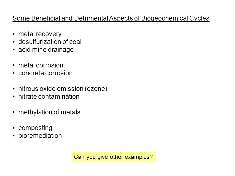Some Beneficial and Detrimental Aspects of Biogeochemical Cycles metal recovery desulfurization of coal acid mine drainage metal corrosion concrete corrosion nitrous oxide emission (ozone) nitrate contamination methylation of metals composting bioremediation Can you give other examples