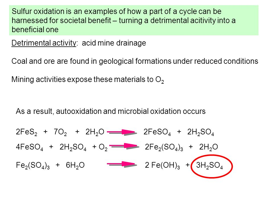 Sulfur oxidation is an examples of how a part of a cycle can be harnessed for societal benefit – turning a detrimental acitivity into a beneficial one