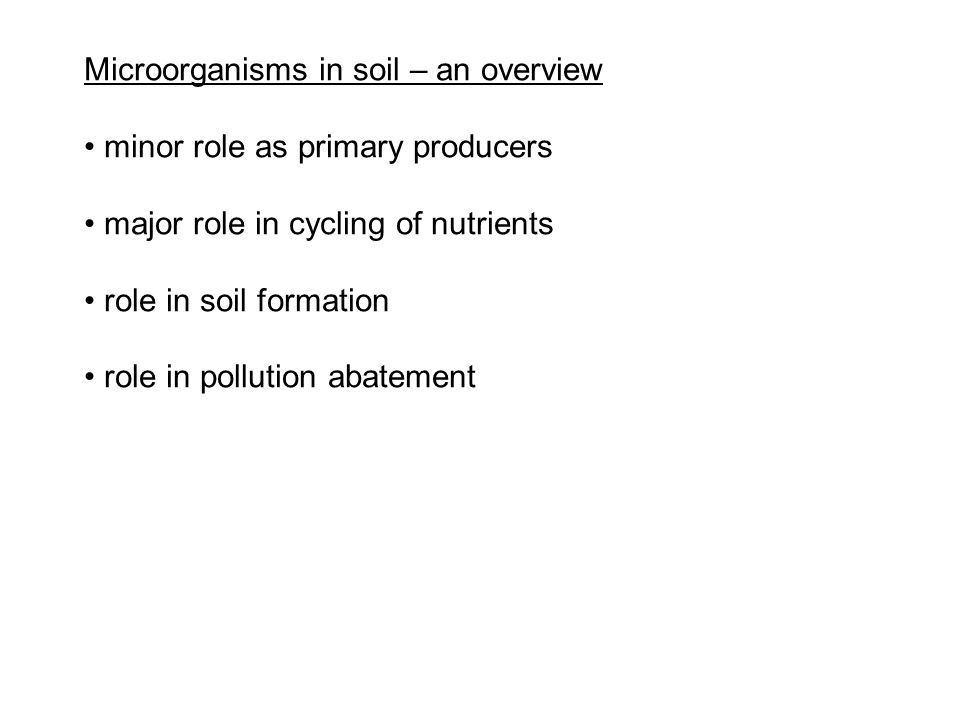Microorganisms in soil – an overview minor role as primary producers major role in cycling of nutrients role in soil formation role in pollution abate