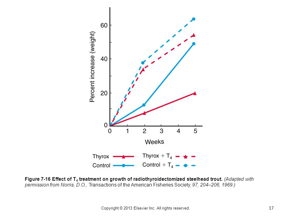 Figure 7-16 Effect of T 4 treatment on growth of radiothyroidectomized steelhead trout. (Adapted with permission from Norris, D.O., Transactions of th