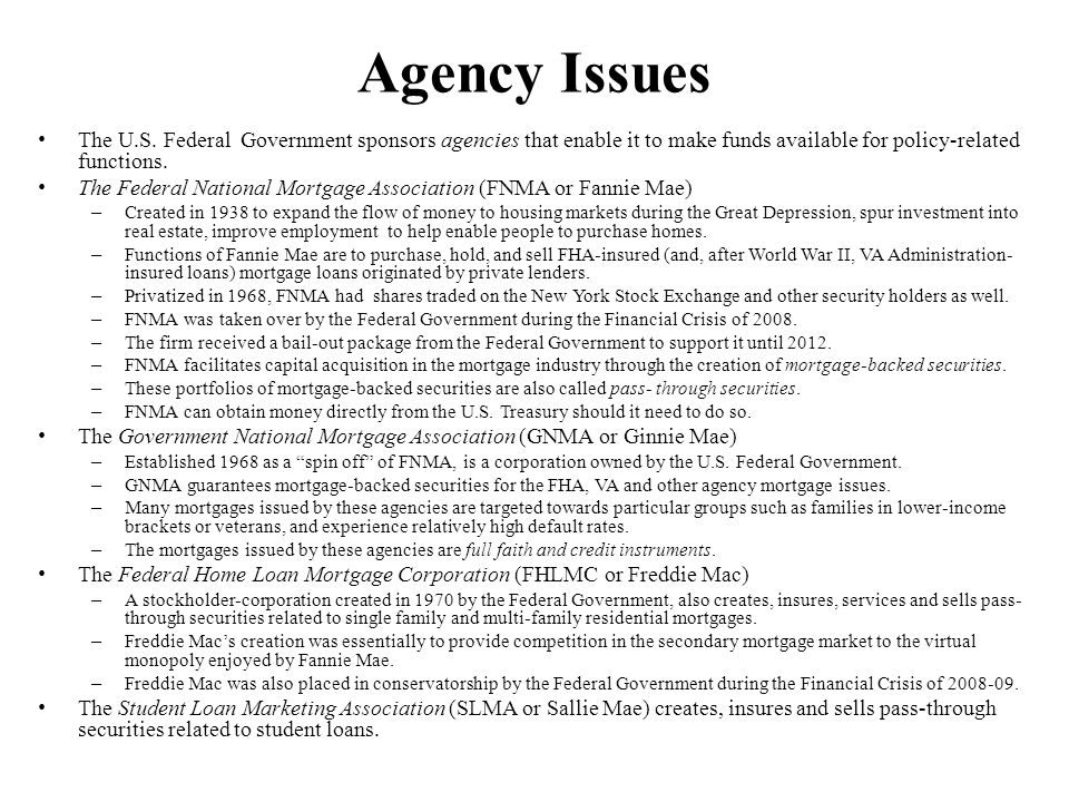 Agency Issues The U.S. Federal Government sponsors agencies that enable it to make funds available for policy-related functions. The Federal National