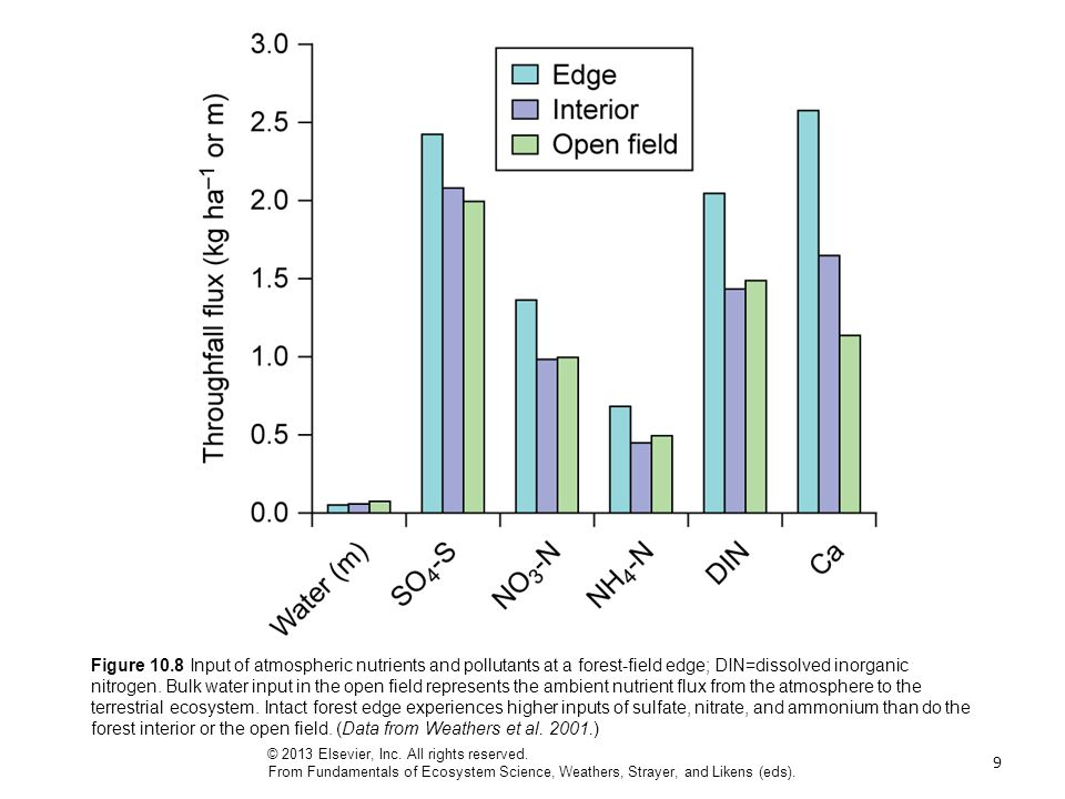 9 Figure 10.8 Input of atmospheric nutrients and pollutants at a forest-field edge; DIN=dissolved inorganic nitrogen.