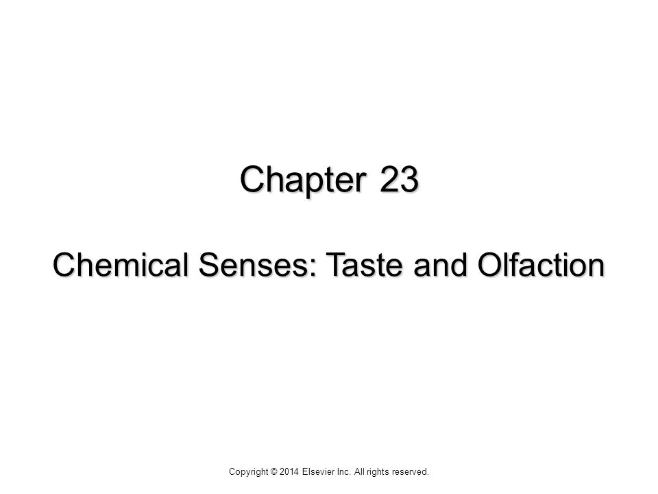 Chapter 23 Chemical Senses: Taste and Olfaction Copyright © 2014 Elsevier Inc. All rights reserved.
