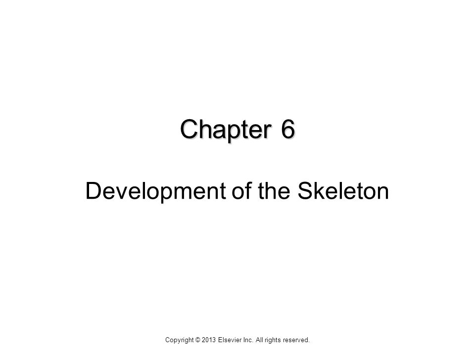 Chapter 6 Chapter 6 Development of the Skeleton Copyright © 2013 Elsevier Inc. All rights reserved.
