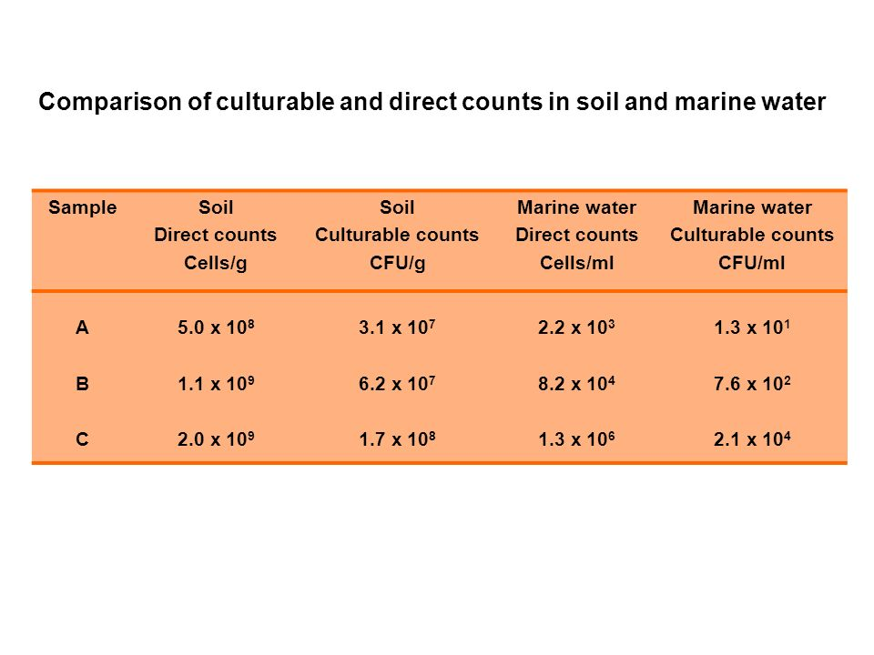 SampleSoil Direct counts Cells/g Soil Culturable counts CFU/g Marine water Direct counts Cells/ml Marine water Culturable counts CFU/ml ABCABC 5.0 x x x x x x x x x x x x 10 4 Comparison of culturable and direct counts in soil and marine water