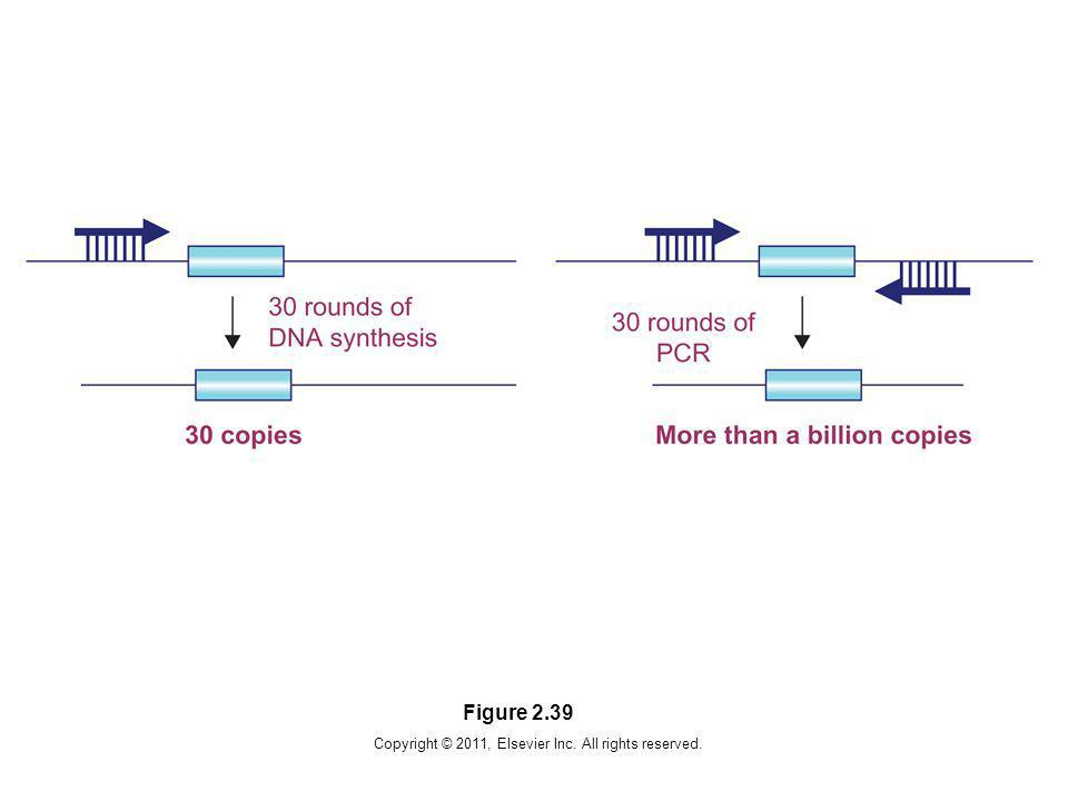 Copyright © 2011, Elsevier Inc. All rights reserved. Figure 2.39