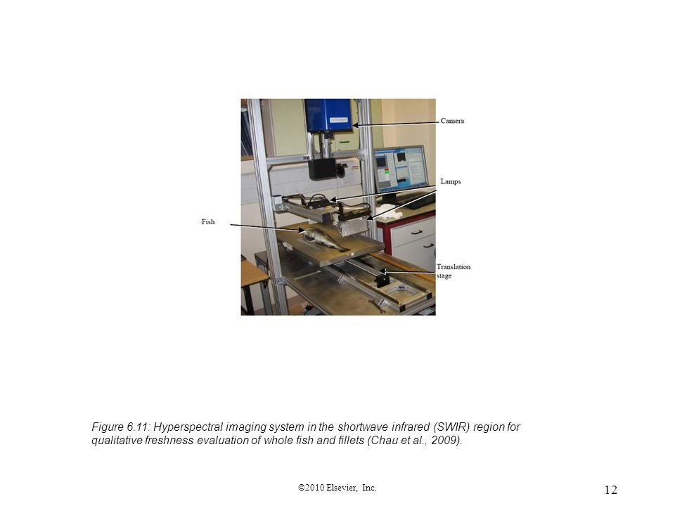 12 ©2010 Elsevier, Inc. Figure 6.11: Hyperspectral imaging system in the shortwave infrared (SWIR) region for qualitative freshness evaluation of whol