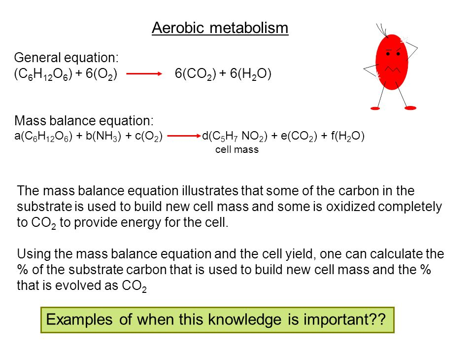 Aerobic metabolism General equation: (C 6 H 12 O 6 ) + 6(O 2 ) 6(CO 2 ) + 6(H 2 O) Mass balance equation: a(C 6 H 12 O 6 ) + b(NH 3 ) + c(O 2 ) d(C 5