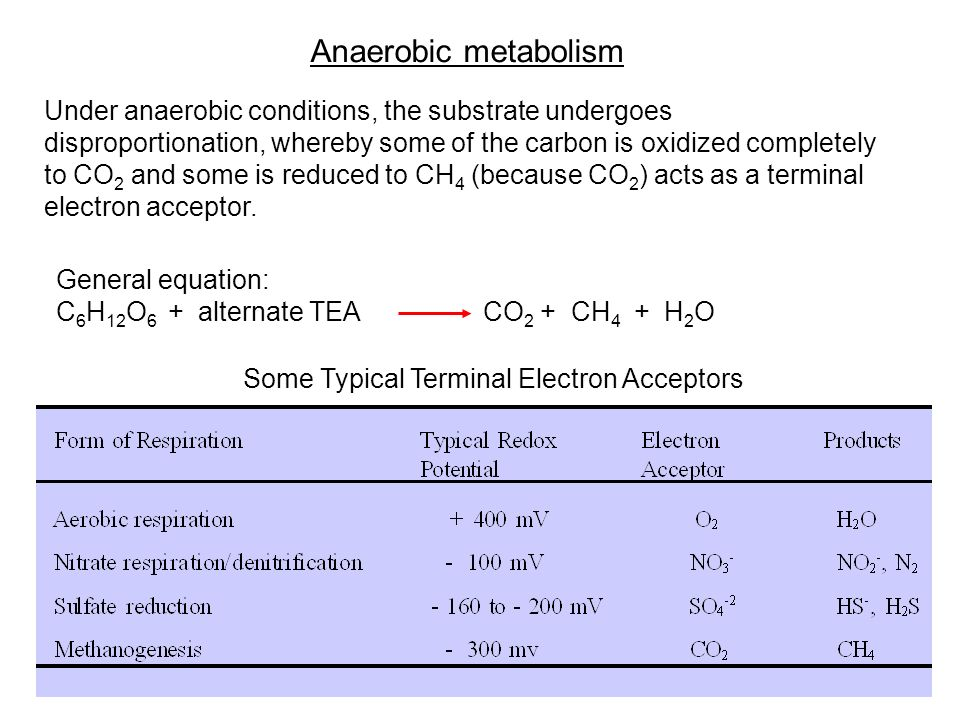 Anaerobic metabolism Under anaerobic conditions, the substrate undergoes disproportionation, whereby some of the carbon is oxidized completely to CO 2