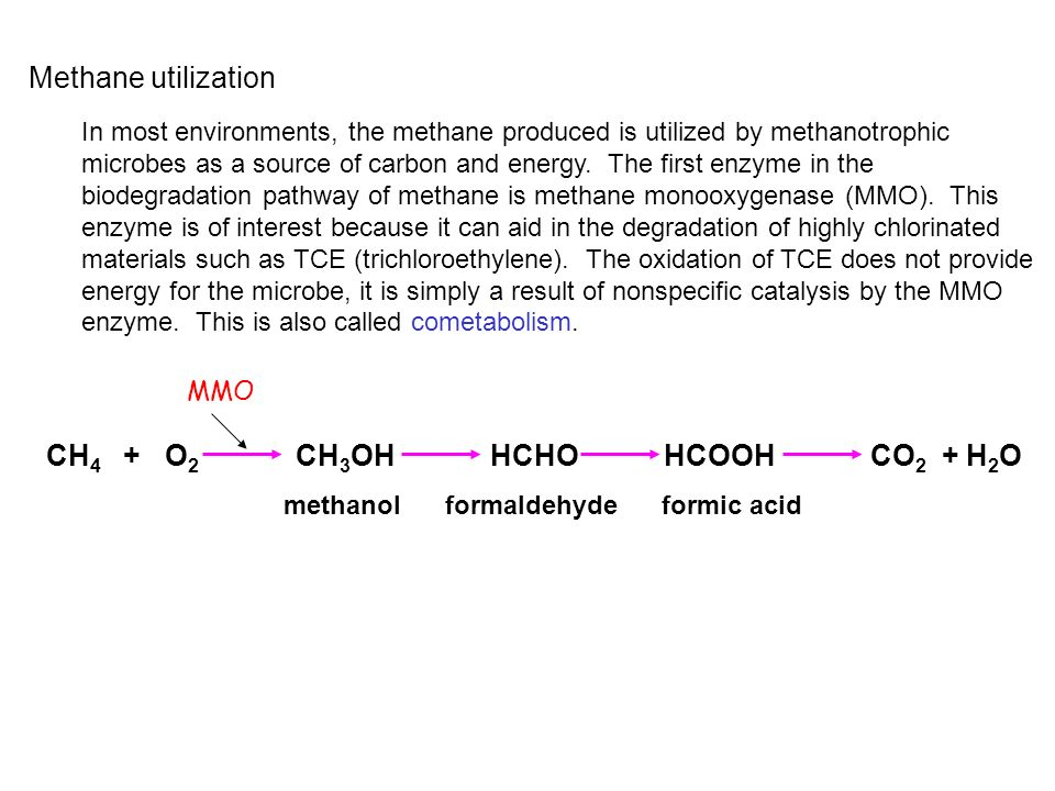 Methane utilization In most environments, the methane produced is utilized by methanotrophic microbes as a source of carbon and energy. The first enzy