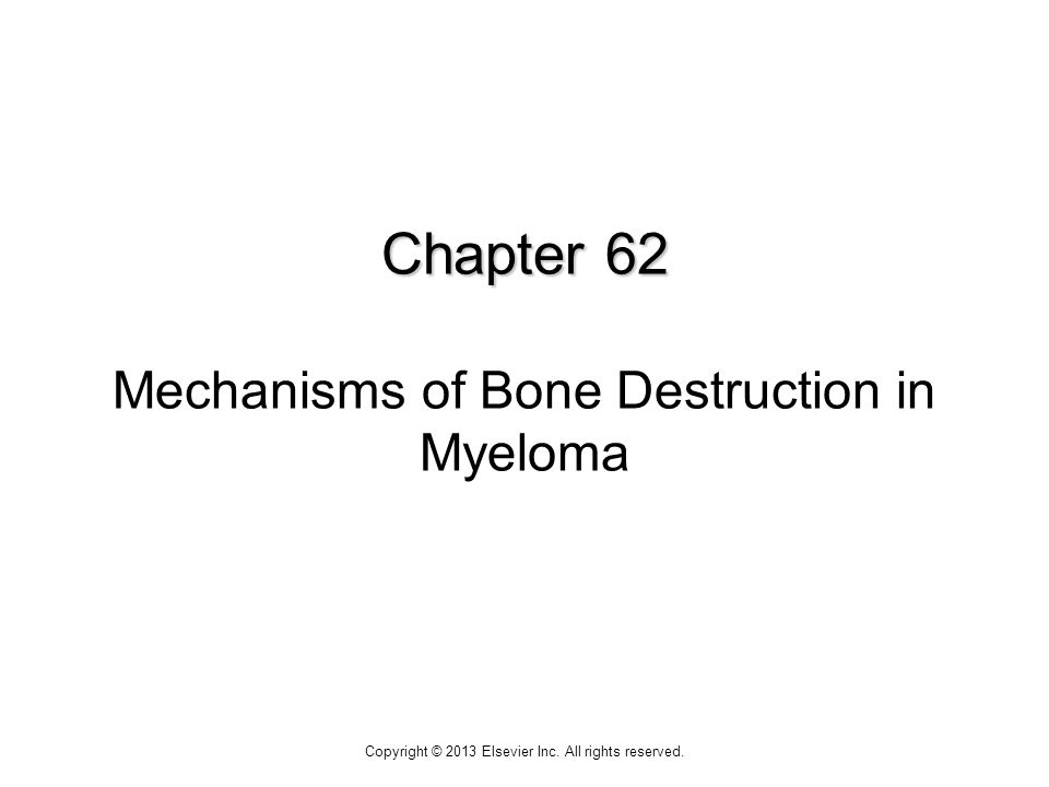 Chapter 62 Chapter 62 Mechanisms of Bone Destruction in Myeloma Copyright © 2013 Elsevier Inc.