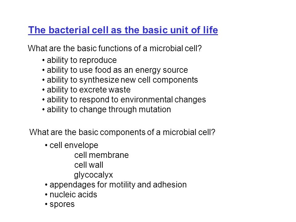 Cell surface meets the outside world Eubacteria have two main types of envelopes, Gram Positive and Gram Negative.