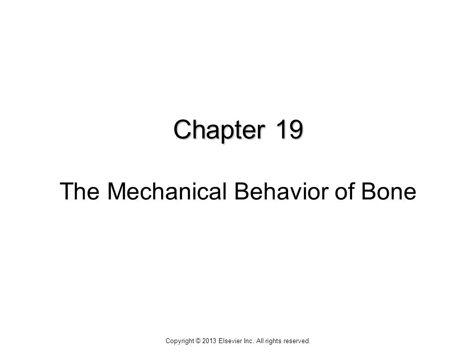 Chapter 19 Chapter 19 The Mechanical Behavior of Bone Copyright © 2013 Elsevier Inc.