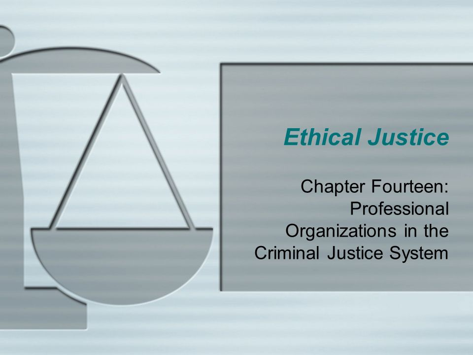 Ethical Justice Chapter Fourteen: Professional Organizations in the Criminal Justice System