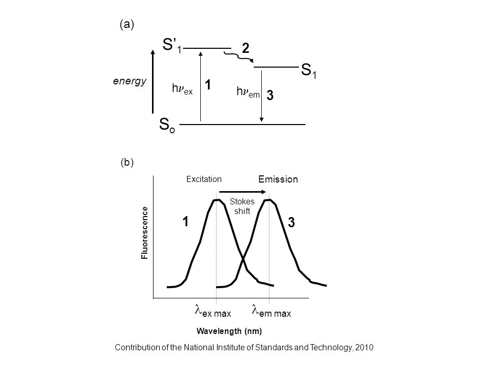 Contribution of the National Institute of Standards and Technology, 2010 h ex h em 1 2 3 SoSo S1S1 S1S1 energy (a) Excitation Emission Wavelength (nm)