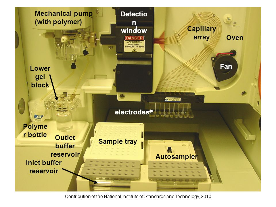 Contribution of the National Institute of Standards and Technology, 2010 Mechanical pump (with polymer) Capillary array Oven Detectio n window electro