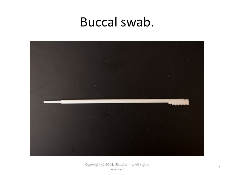 Buccal swab. Copyright © 2014, Elsevier Inc. All rights reserved. 3