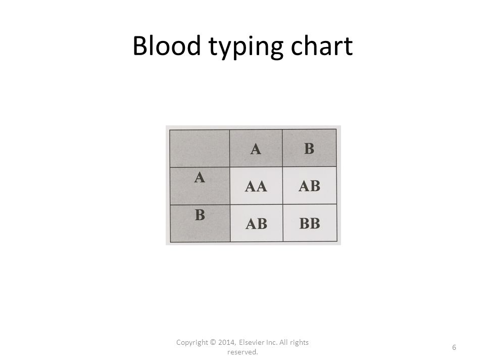 Blood typing chart Copyright © 2014, Elsevier Inc. All rights reserved. 6