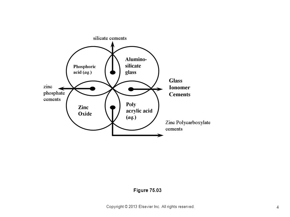 4 Copyright © 2013 Elsevier Inc. All rights reserved. Figure 75.03