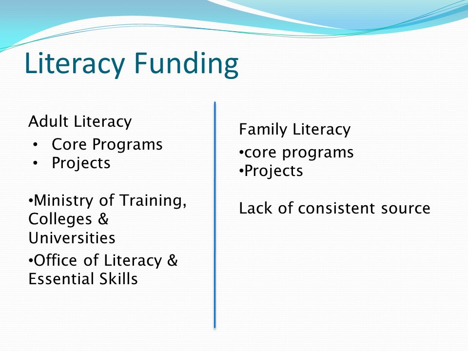 Literacy Funding Adult Literacy Core Programs Projects Ministry of Training, Colleges & Universities Office of Literacy & Essential Skills Family Lite