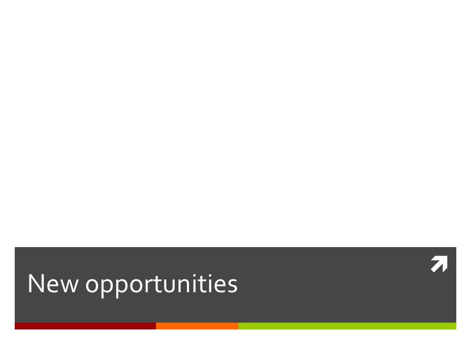 Case Study: Senior Analyst Adobe Systems Senior Analyst, Information Resources/Research Portal Manager, Adobe Systems Develop and maintain company-wide research and information portal.