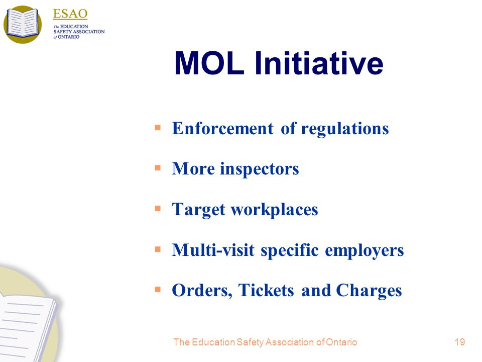 The Education Safety Association of Ontario19 MOL Initiative Enforcement of regulations More inspectors Target workplaces Multi-visit specific employers Orders, Tickets and Charges