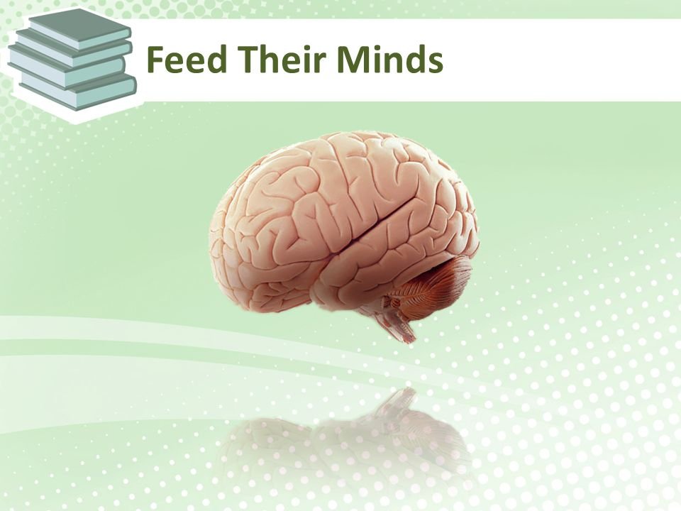 Feed Their Minds