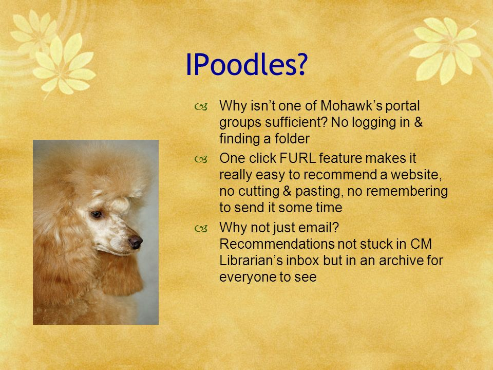 IPoodles. Why isnt one of Mohawks portal groups sufficient.