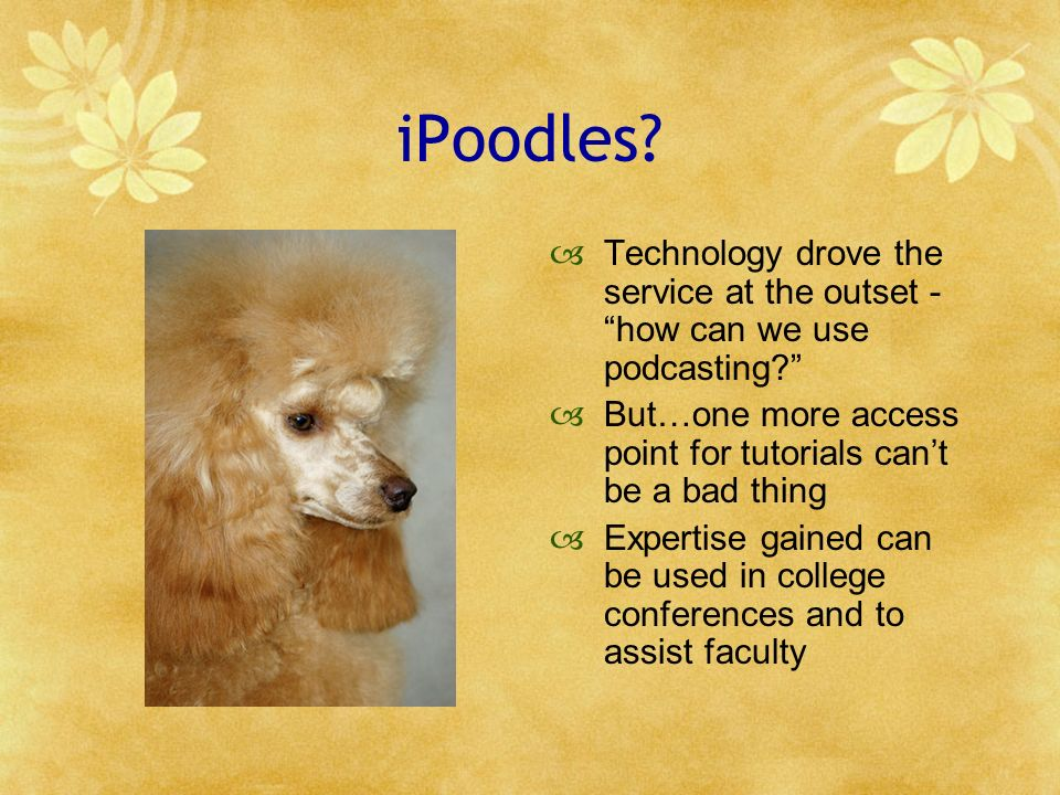 iPoodles.Technology drove the service at the outset - how can we use podcasting.