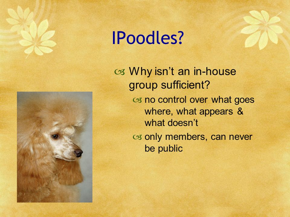 IPoodles? Why isnt an in-house group sufficient? no control over what goes where, what appears & what doesnt only members, can never be public