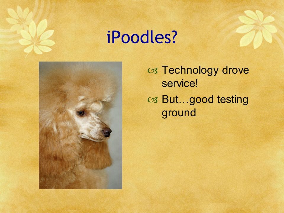 iPoodles? Technology drove service! But…good testing ground
