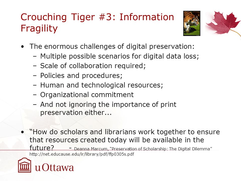 Crouching Tiger #3: Information Fragility The enormous challenges of digital preservation: –Multiple possible scenarios for digital data loss; –Scale