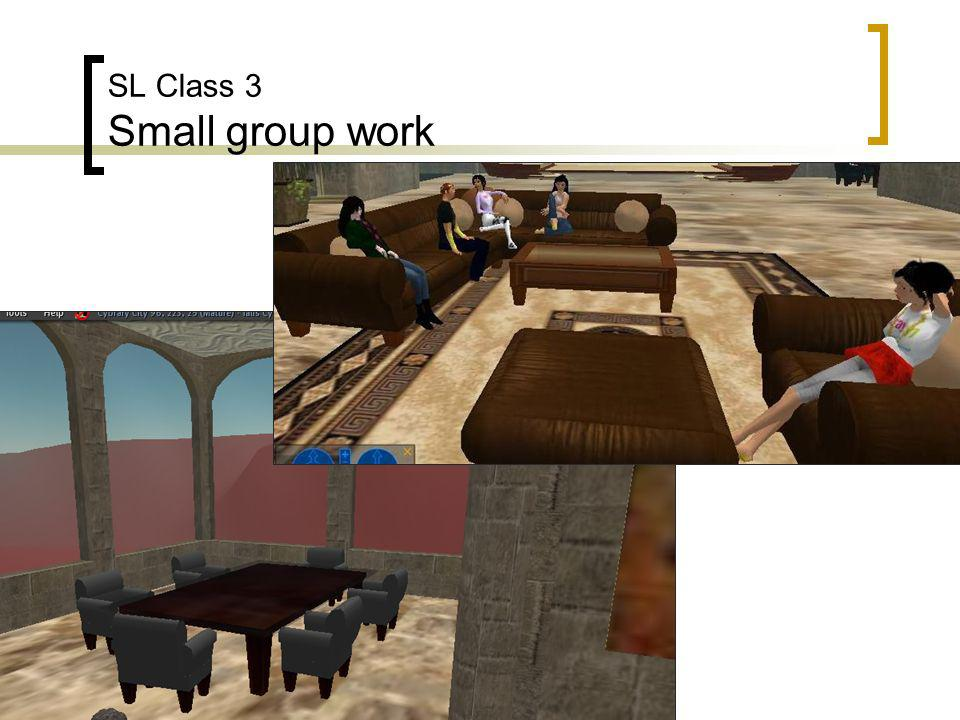 SL Class 3 Small group work
